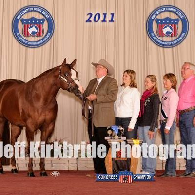 Telusives coolest by Coolest out of the great broodmare Sheza Telusive Kid. Telusives Coolest  is a AQHA Champion and Congress Champion she has 2 superiors and over 150 AQHA points has produced 2 AQHA world champions 2 AQHA reserve champion A High Point year end rookie and numerous point and money earning offsprings with over 550 AQHA points   embryos available for purchase