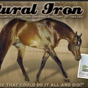 Natural Iron